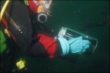 Diver Video Cables